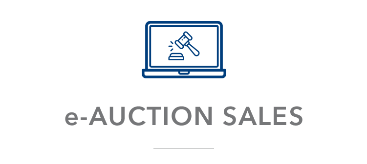 AUCTION SALE V01A
